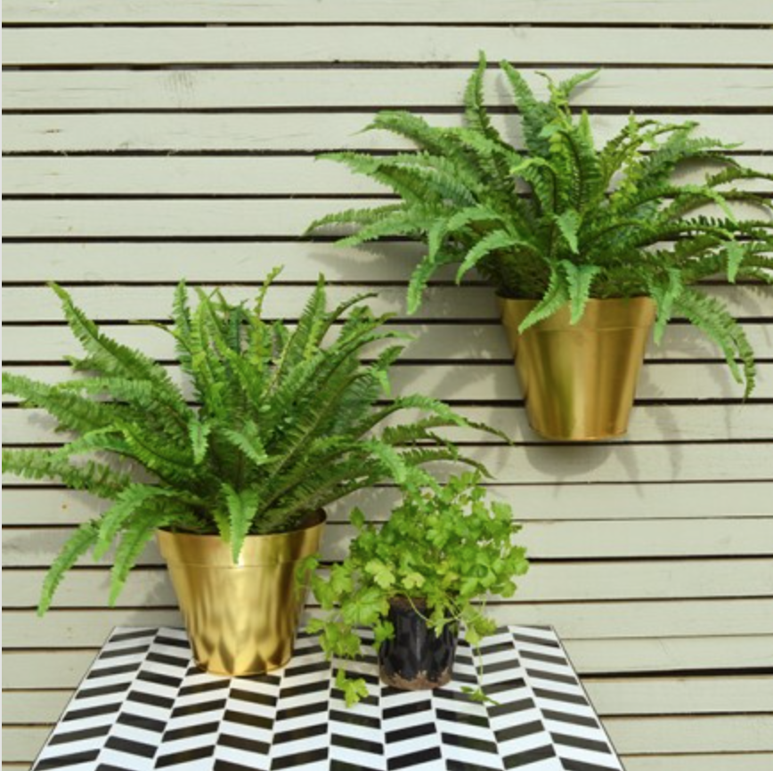 Gold wall planter £16.95
