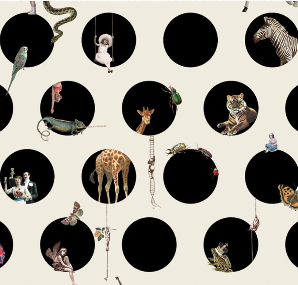 Emily Humphrey's Character Polka fabric