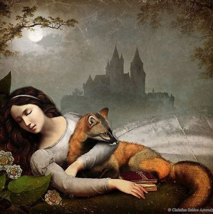 Another print by Christian Schloe - I need to have this one as it references my taxidermy fox!
