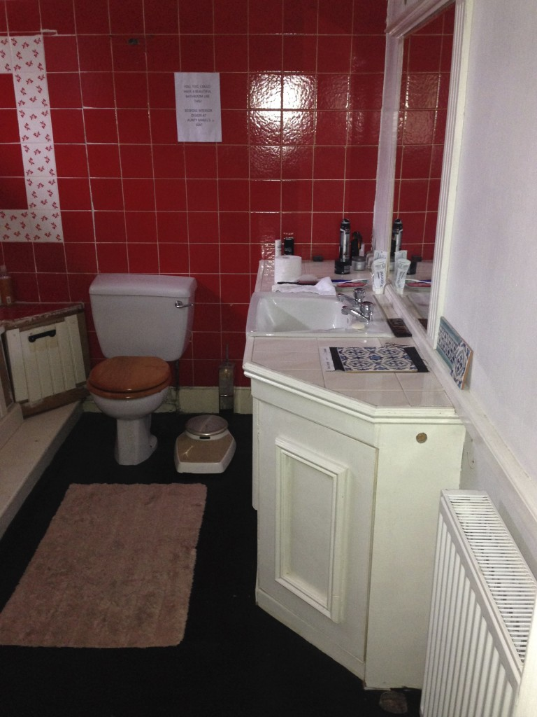 Here's the bathroom before we started work on it - isn't it marvellous?!