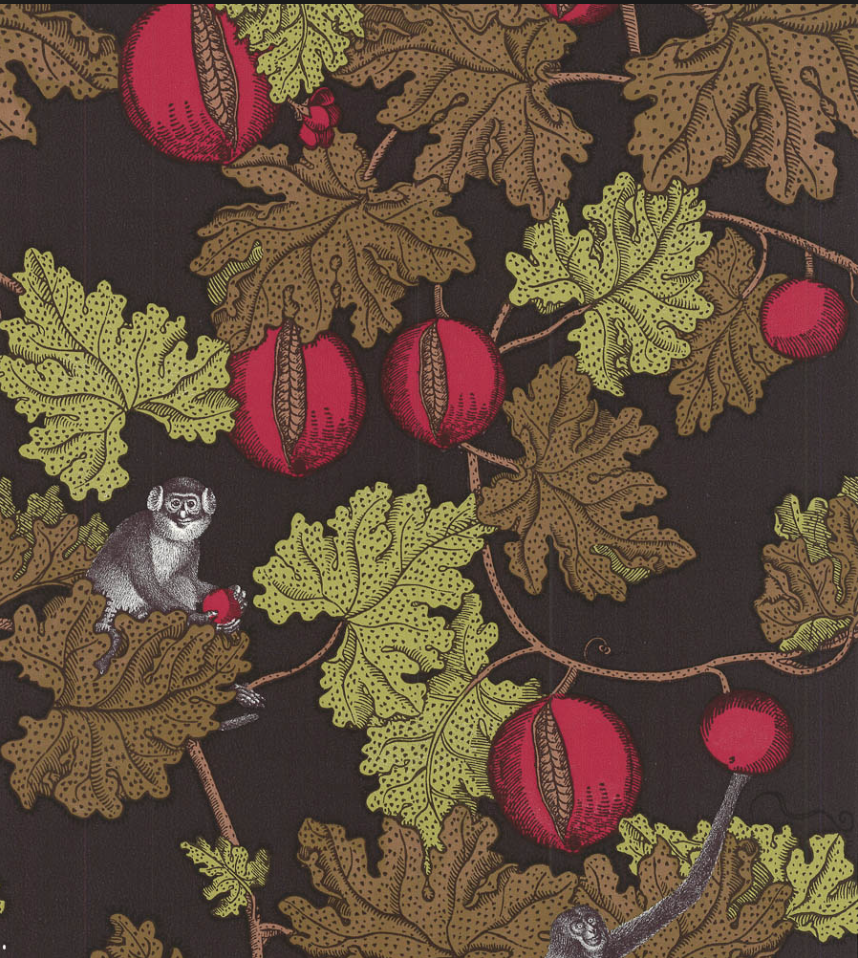 I adore Cole & Son's 'Frutto Proibito', it's the cheeky monkey peeking out at you that does it!
