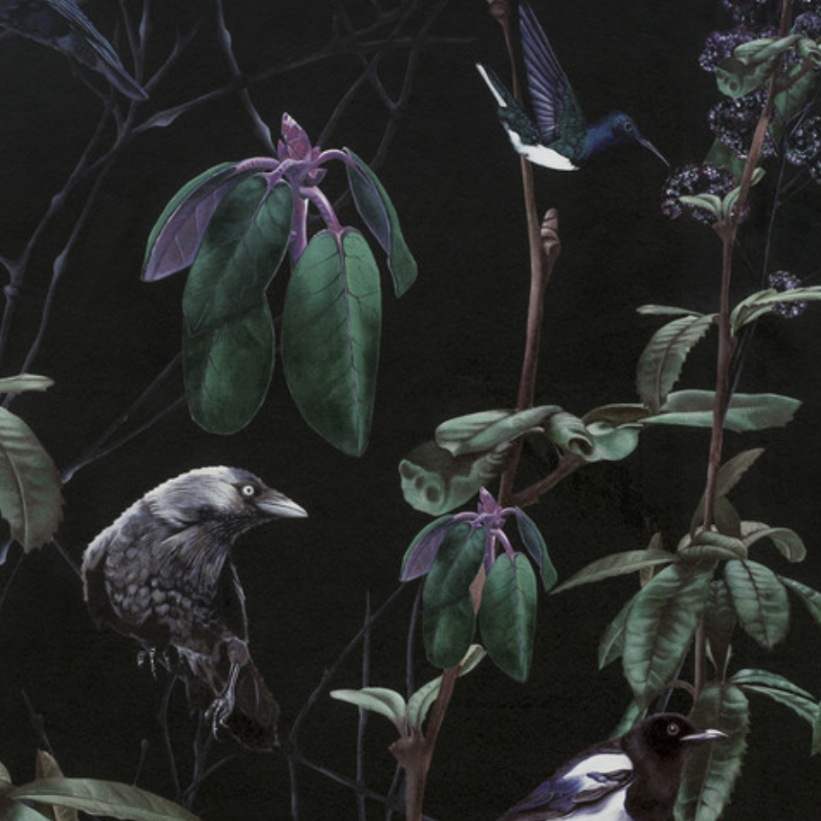 Who says magpies are bad luck. I'd feel jolly lucky to have this lush wallpaper on my walls. 'Folia Dark' by Witch and Watchman