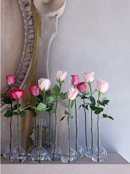 Single flower stems in a collection of vases