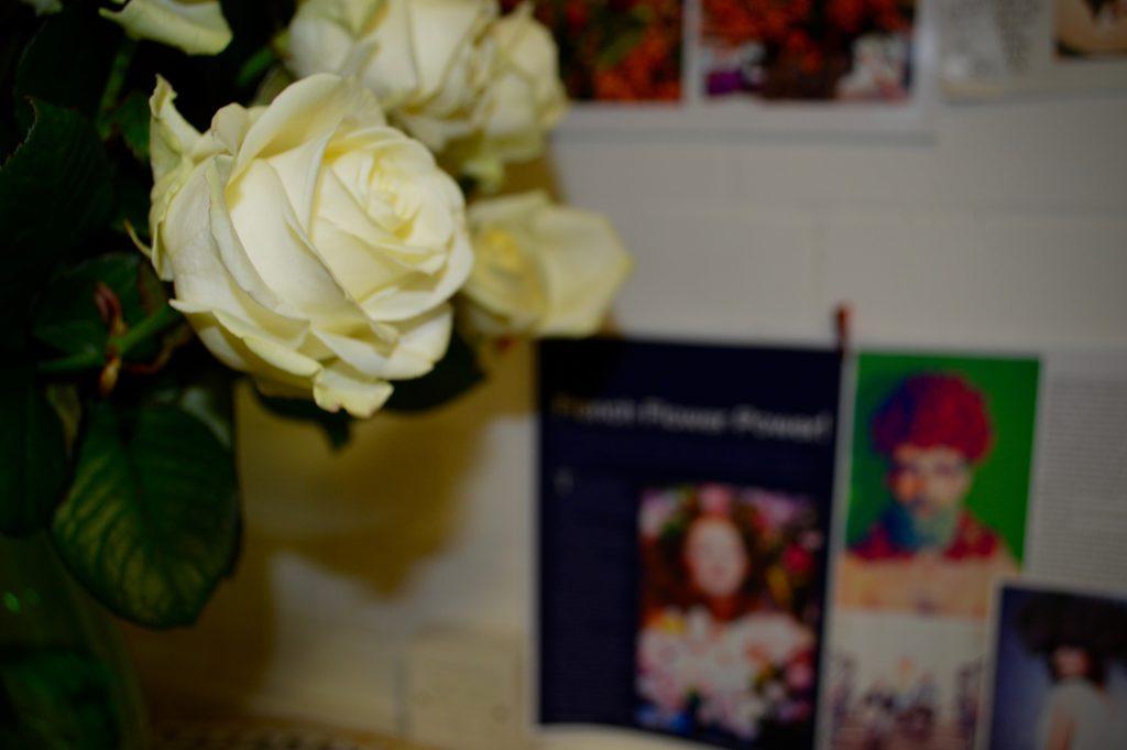 flowers at home workshop frog flowers